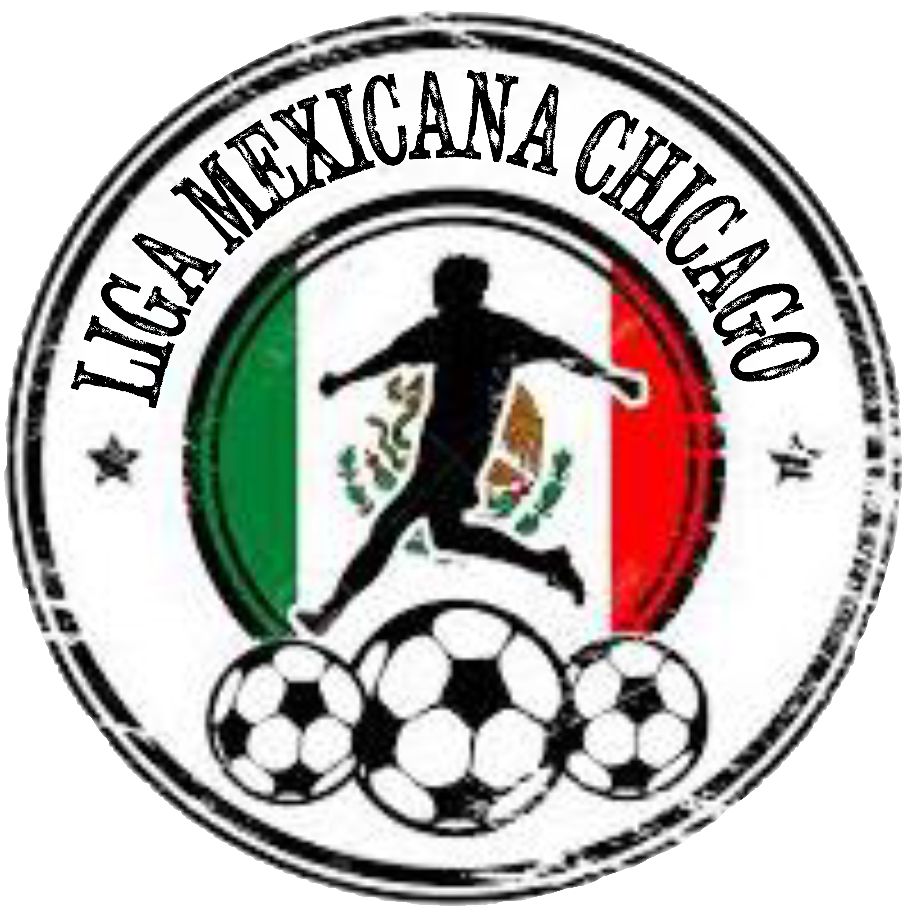 Liga Mexicana Chicago Indoor Soccer Season logo